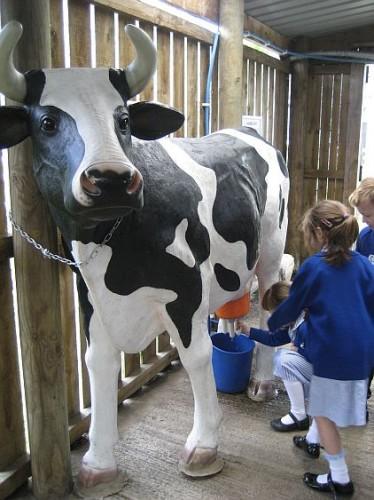 Godstone Farm 123