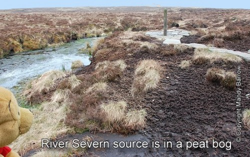Source of the River Severn