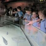 Aquarium 2012 015