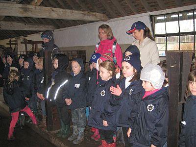 Ladyland Farm 073