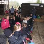 Ladyland Farm 081