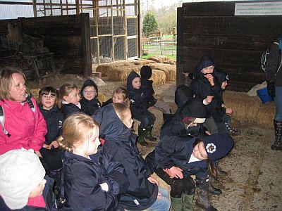 Ladyland Farm 094